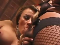 Sexy shemale in lingerie sucks cock